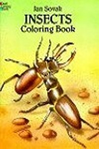 Coloring Book - Insects