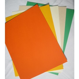 Paper - Fall Colors Cardstock (50 pack)