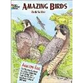 Amazing Birds (Coloring Book)